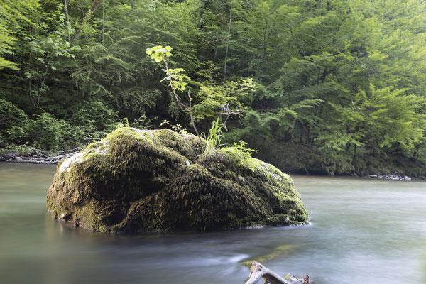 Rivière et rocher Héry sur Albi