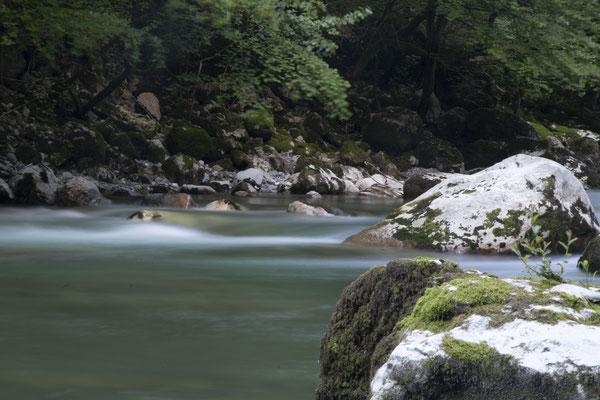 Rivière Héry sur Albi