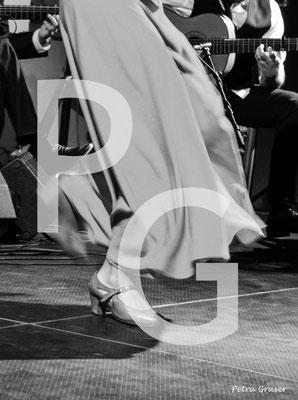 Flamenco Step Three