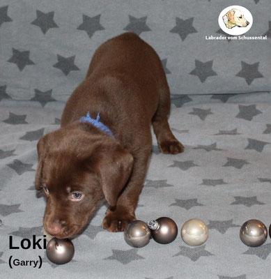 Loki vergeben