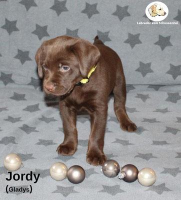 Jordy vergeben
