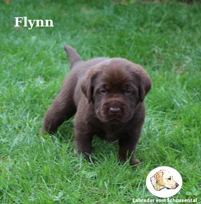 vergeben Flynn/Letty !