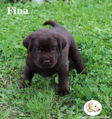 vergeben Fina/Ella !
