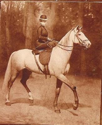 Reina María Cristina