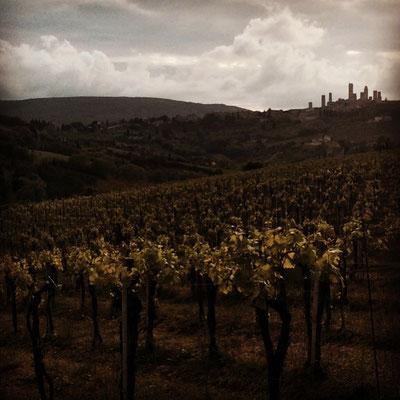 Blick zurück auf San Gimignano