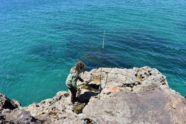 Meeresangeln in Portugal, Fang von Makrelen