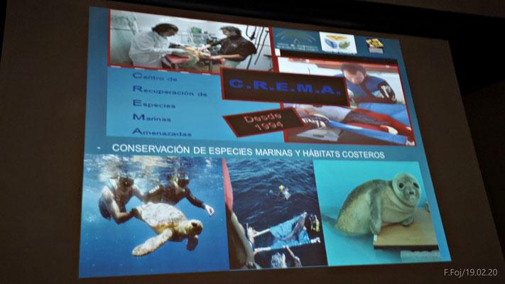 Diapositiva de las actividades del CREMA