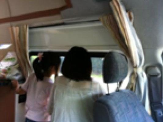 サファリ、車内から。 窓がたくさんあるのでいろいろ見れます。ぜいたくな空間でした。