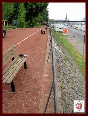 Rheinseite nach den Richtarbeiten mit neuer Konservierung und Deckanstrich