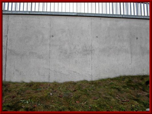 erfolgreiche Entfernung des Graffiti von der Sichtbetonfassade ohne deren Oberfläche zu beschädigen