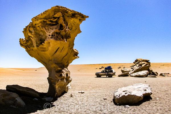 Árbol de Piedra - Sud Lipez