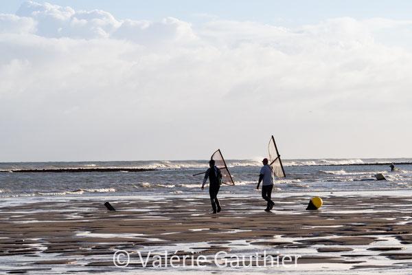 Pêche à la crevette bouquet lors des grandes marées - Normandie