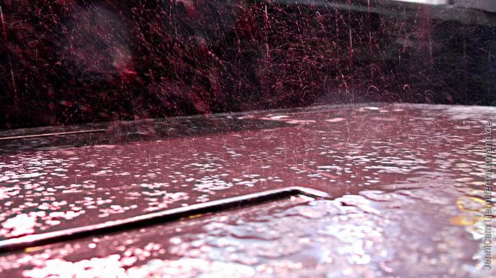 ... nass, aber schön anzusehen, so auf dem Foto. :)