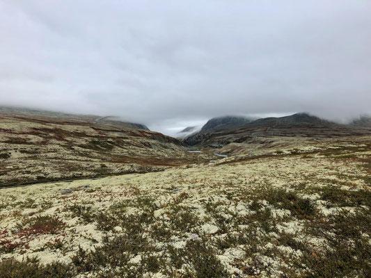 Tiefhängende Wolken und ein kalter Wind, Rondane wir kommen.