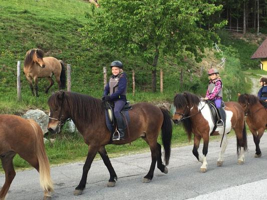 Lauras erster langer Ausritt in den Bergen. Für Pferdefreunde eine Wucht!