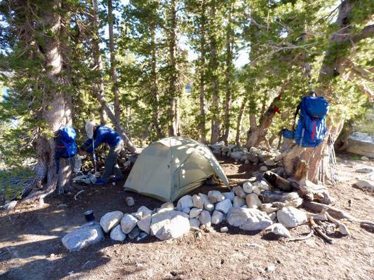 Unser Camp im Wald etwas über Lake Virginia