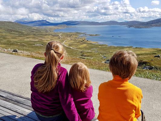 Blick auf den Vinstre See, Valdresflye