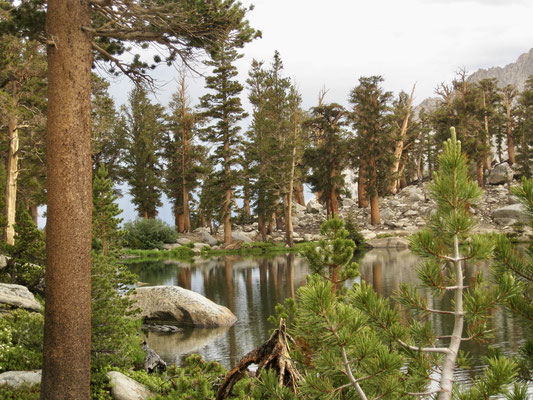 Little Clair Lake kurz nach dem Gewitter