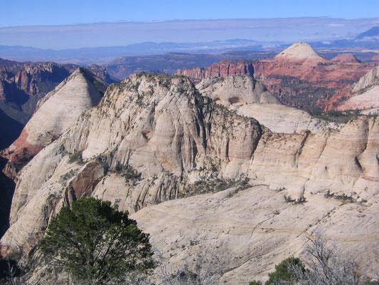 Man sieht weit in den Zion National Park hinein