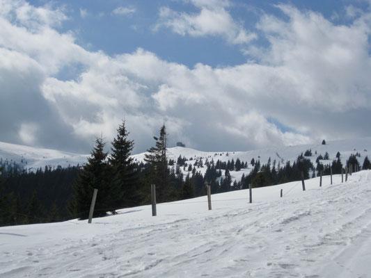 Das Ziel im Hintergrund vor Augen, die Wolfsberger Hütte.