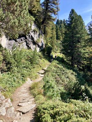 Nach der Alpenrosehütte verläßt man den Fahrweg