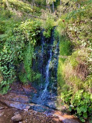 Wasserfall am Sankenbachsee