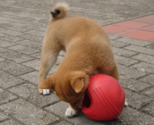 Mond te klein of bal te groot?