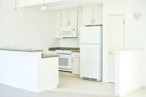 updated modern kitchen with white cabinetry