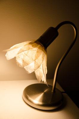 neuer Lampenschirm