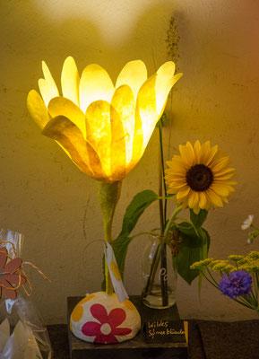 Wildes Sonnenblümchen