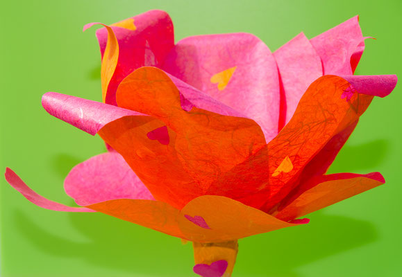Hab dich lieb Blume orange-rot