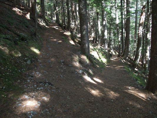 On the Rampard Ridge Trail