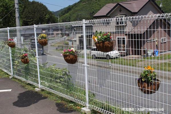平成30年5月「集会所周辺の花植え」