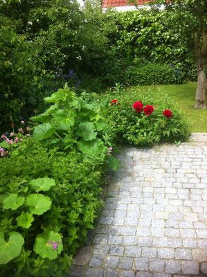 Terasse nicht einsehbar und verwachsen mit schönen Blumen