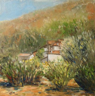 Südliche Landschaft Öl_Lwd.50x50cm