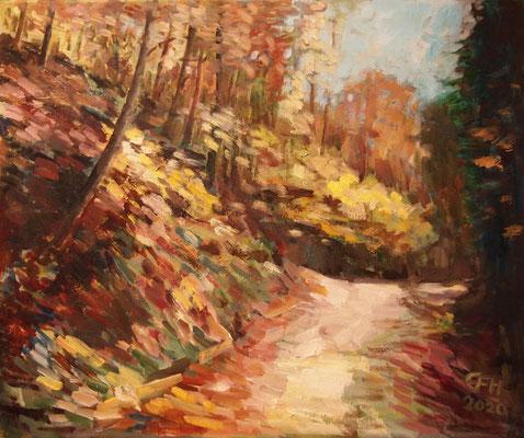Autumn Glow Nr. 2, Öl_Lwd.50x60cm