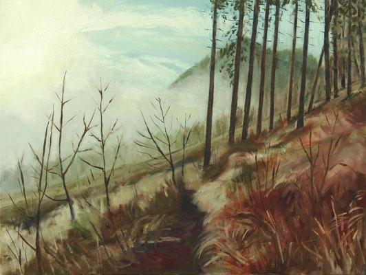 November, Öl_Lw. 60x80cm