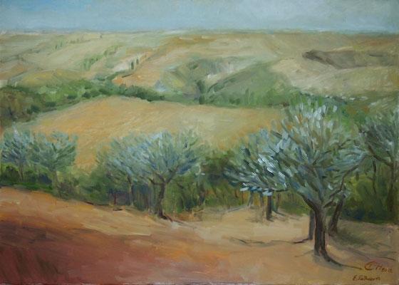 Die Weite der Toskana,Öl-Lwd.50x70cm