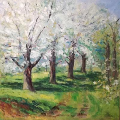 Blühende Bäume, Öl_Lwd. 80x80cm