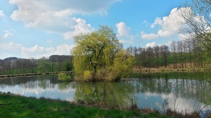 Grün und blau, Frühlingsfarben
