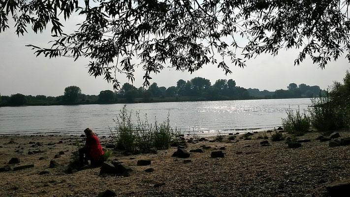 Am Rheinstrand- Idylle