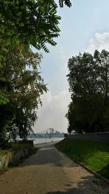 Uerdinger Hafenblick