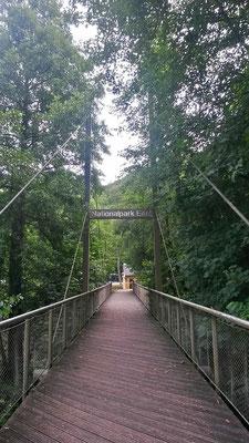 Brücke zum Nationalpark Infopunkt