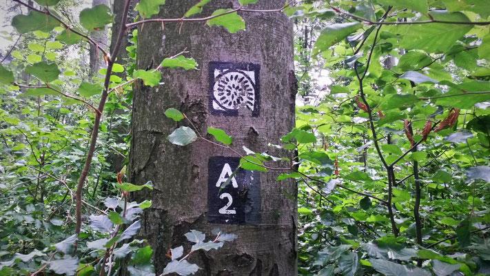 Alte Wegkennzeichnung im Wald