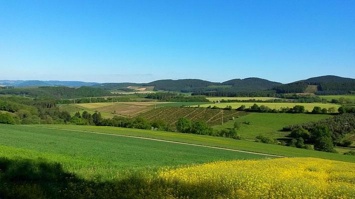 Anfahrt nach Arpe bei Schmallenberg