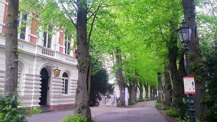 Mein Lieblingsbiergarten in Kaiserswerth