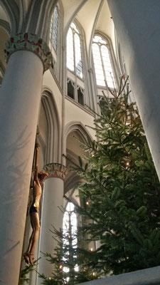 Der Weihnachtsbaum ist schon abgeschmückt