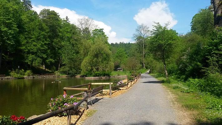 Gepflegte Spazierwege durch den Park