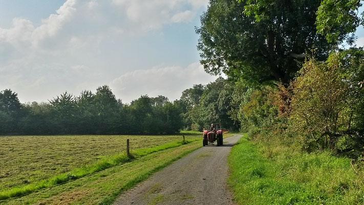 Die Bauern sind unterwegs und mähen das Gras