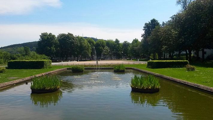 Blick vom Standesamt im Schloßpark auf den privaten Reitplatz von Fürstin Nathalie zu Sayn-Wittgenstein